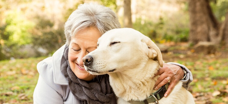 6 Ways Companion Pets Can Help the Transition to Senior Living