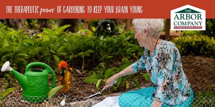 customblog_therapeutic-gardening_1024x512.jpg